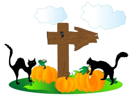 Wooden signboard with the pumpkins and cats Vector