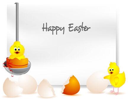 eggshells: C�scaras de huevos rotos con el polluelo amarillo en primicia