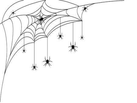 spider web: Silhouette of spider web with spiders