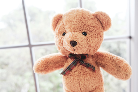 The brown-haired teddy bear stands by the window and encourages people who are disappointed to be discouraged.