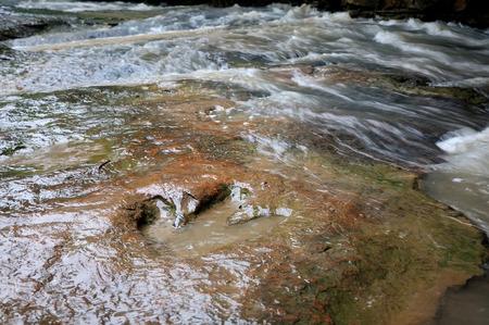 real dinosaur footprint on Phu Faek Forest Park ,Kalasin, Thailand.