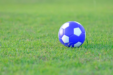 Soccer ball on green grass playground  photo