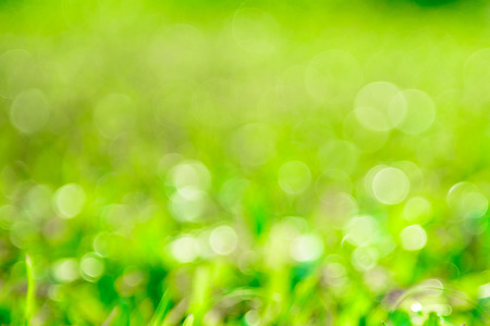 abstract green background Reklamní fotografie - 41218594
