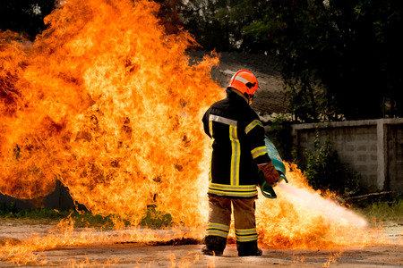 bombera: Bomberos de formación