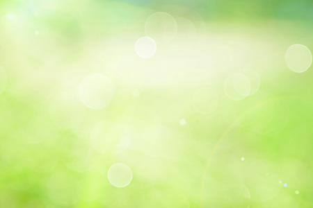 spring green: abstract green background Stock Photo