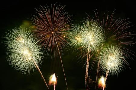 fireworks on the black sky background