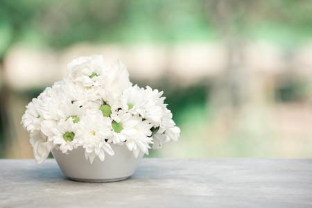 Fiori bianchi in un vaso Archivio Fotografico - 74764732