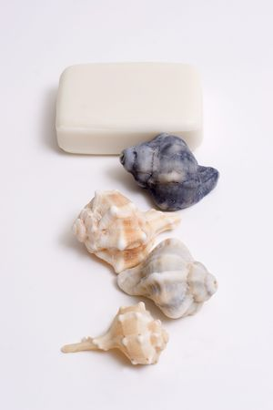 SPA Items - isolated soap and seashell Stock Photo - 798088