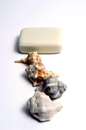 SPA Items - isolated soap and seashell Stock Photo - 2354645