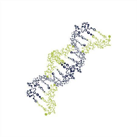 DNA helix biotechnology gene chromosome logo and vector illustration