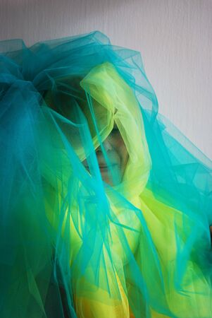 tulle: woman in tulle