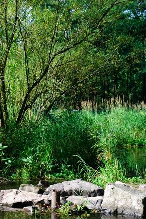 river, czech republic photo