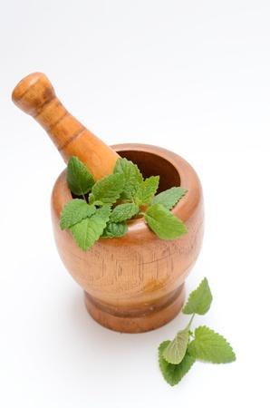 alternative medicine: wooden mortar with melissa leaves