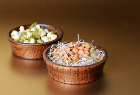 sprouts Stock Photo - 29578421
