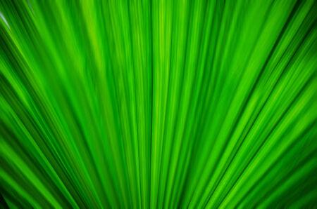 bluer: green background