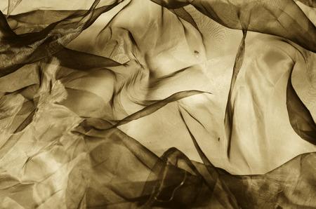 sepia: organza fabric in sepia