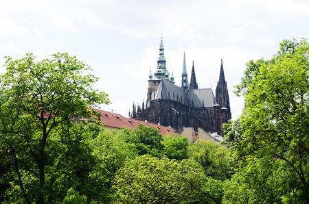 vitus: Saint Vitus Cathedral in Prague