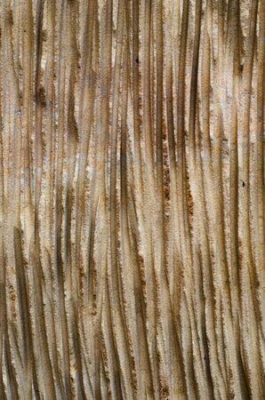 sandstone structure