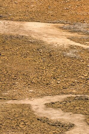 dry land: Dry land in drought crisis in Thailand Stock Photo
