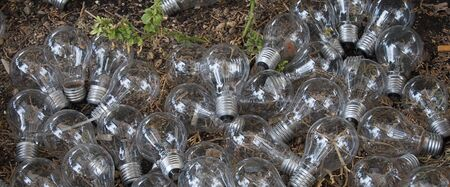 Light Bulbs Over Ground 版權商用圖片