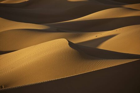 sand dunes in evening light in the Moroccan Sahara