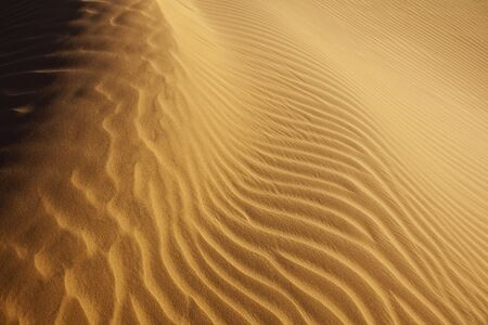 aridness: close-up of sand pattern in the Sahara desert