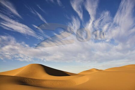 New Year 2010 with desert sand dunes and cloudy blue sky photo
