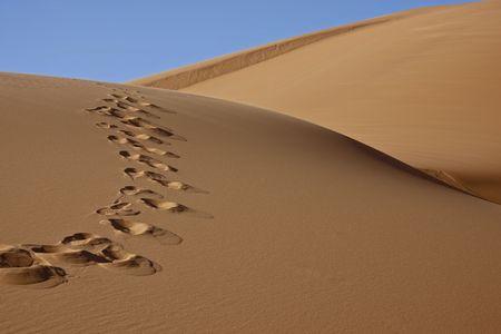 footprint: huellas en el desierto arena de dunas, con cielo azul