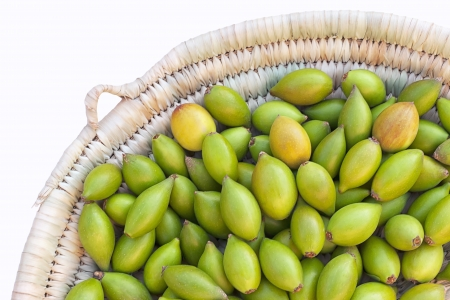 tree nuts: Argan nuts from the Argan tree, that is cultivated for the oil (argan oil) which is found in the fruit.