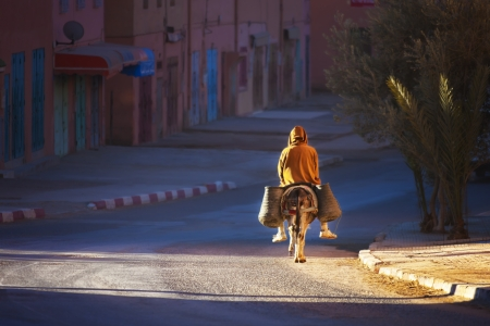 burro: Hombre en burro Zonas madrugada