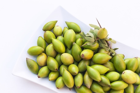 oil tree: Argan nuts from the Argan tree, that is cultivated for the oil (argan oil) which is found in the fruit. The oil is rich in fatty acids and is used in cooking and cosmetics.