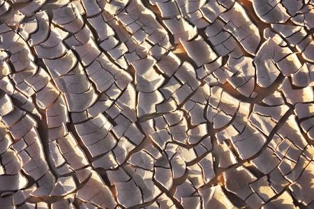Dry earth in the Sahara desert, Morocco Stock Photo - 20753018