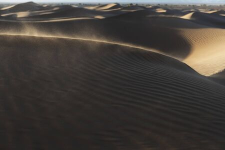 Wind blowing sand into the air in the desert sand dunes at sunset. Sahara desert, Mhamid, Morocco.