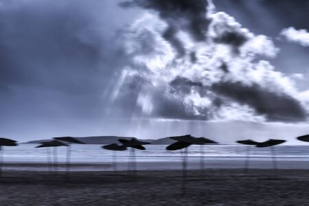 Empty beach with parasols against dark cloudy sky. Stormy weather with gloomy atmosphere and motion blur.