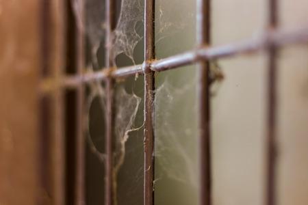 oude smeedijzeren balustrade die roestig is met spinnenwebben.