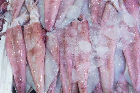 Fresh frozen squid for sale in the market, Thailand. Stock Photo