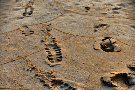 Footprint in sand. Beautiful sunset at tropical ocean beach in vintage style