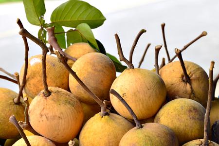 Santol fruit ,Thailand fruit  .