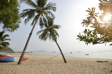 coconut palm tree on the beach sunrise time in  Thailand. Stock Photo