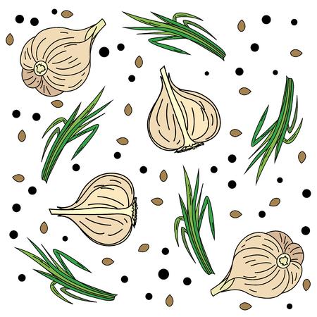 Aromatic garlic Fresh beautiful and beautiful garlic