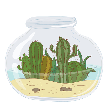 Cactus in a glass jar with water. Vector graphics