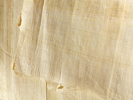Handmade papyrus paper from egypt - an excellent background in high resolution Stock Photo