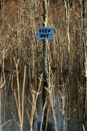 keep out: A sign that reads keep out posted on a tree in a flooded area of the forest.