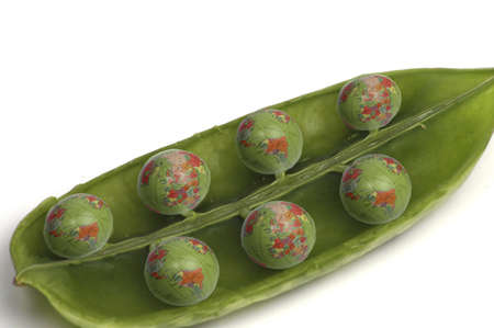 A pea pod filled with peas that resemble world globes.