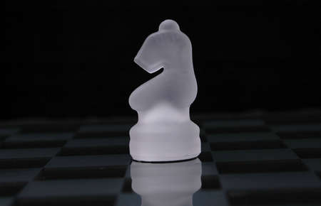 A side view of the opaque white knight from a glass chess set.