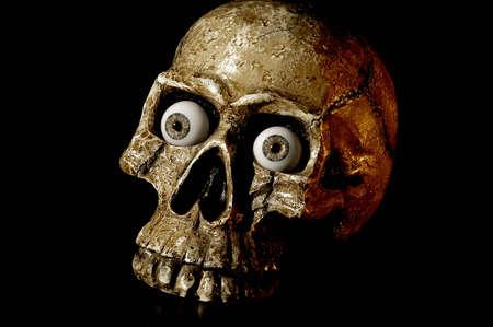 A skull with eyeballs in its sockets.