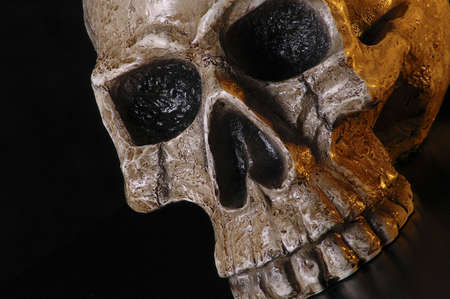 A skull on a black background. Stock Photo