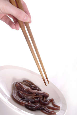 revolting: A hand holding chopsticks above a plate of worms.White background.