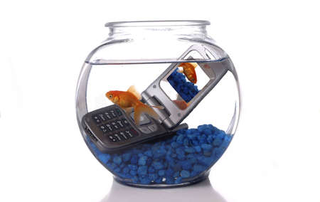 A goldfish in a bowl swims by a cell phone submerged in the water. A picture of the same goldfish is displayed on the screen of the cell phone. Orientation is horizontal. Room for text.