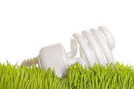 A fluorescent light bulb rests on a patch of grass.
